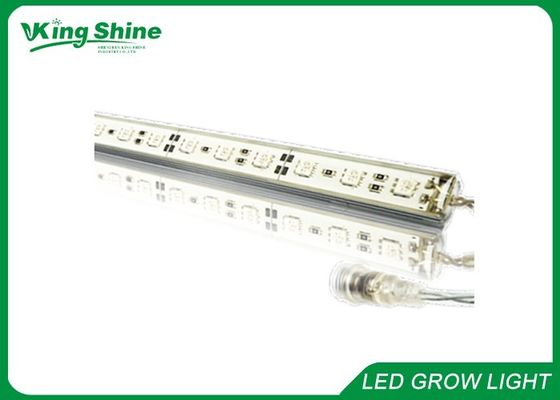 White Seedling Lighting Led Light Bar, smd 5050 Led Strip Grow Light 20cm